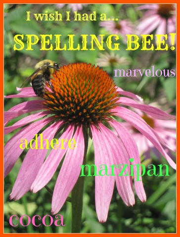Spelling bee pic