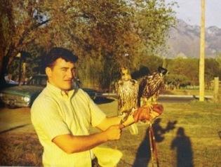 Dale birds of prey
