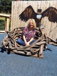 Danna birds nest 2017